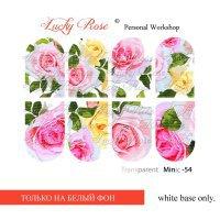 Слдайдер дизайн Minic-54 Lucky Rose Clube 046512